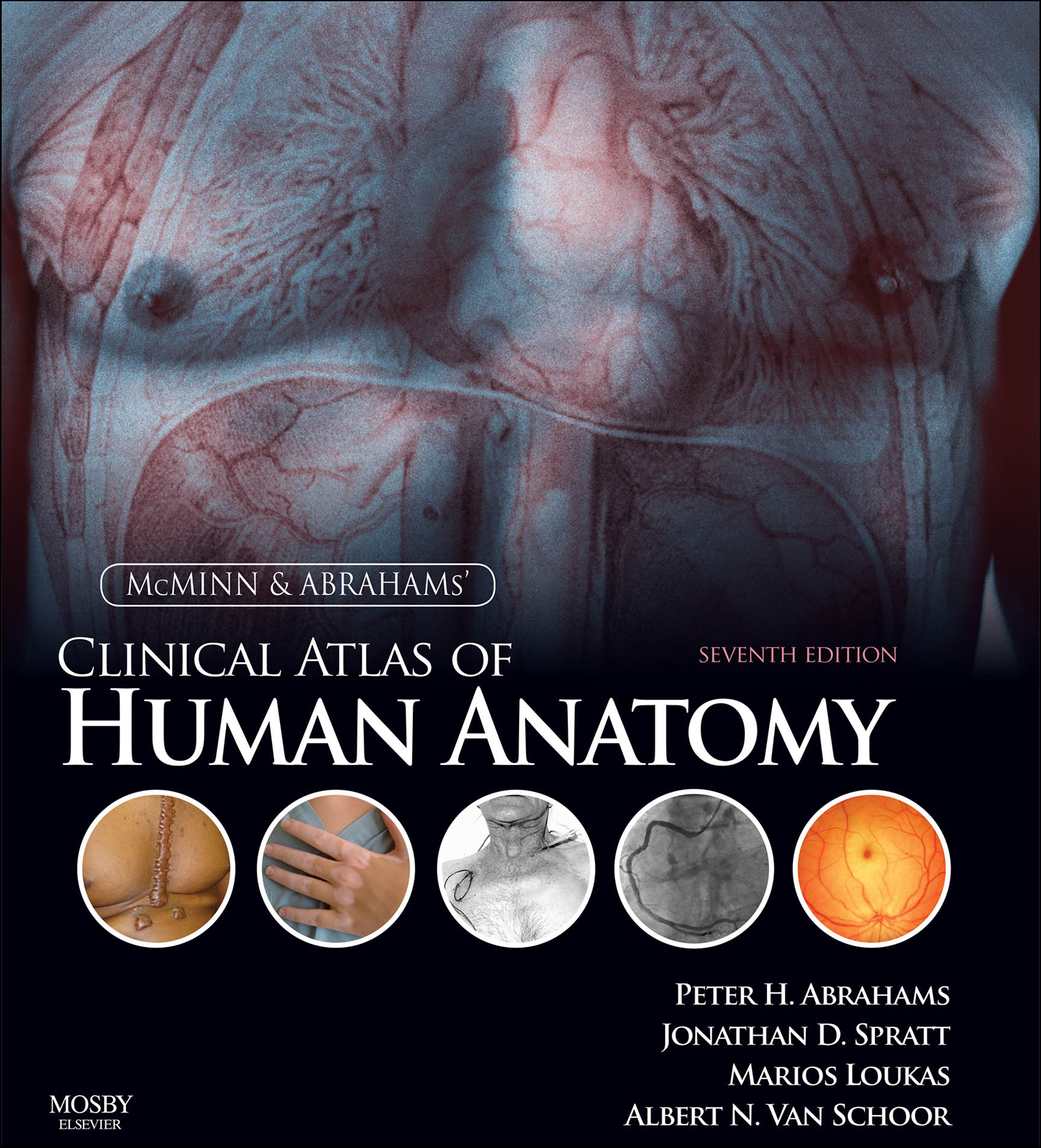 Outstanding Atlas Of Anatomy Gilroy Image Collection - Human Anatomy ...